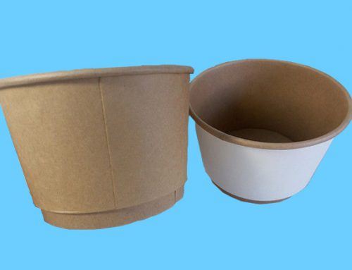 Double Wall Paper Bowl